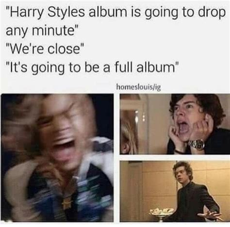 Harry Styles Memes - 17 best ideas about harry styles memes on pinterest harry styles funny one direction memes