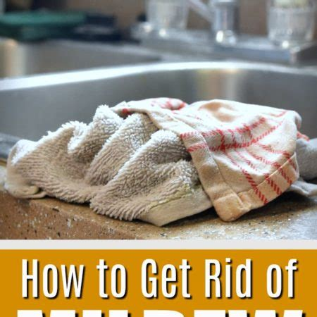 how to get rid of kitchen sink smell cleaning tutorials what 39 s up fagans