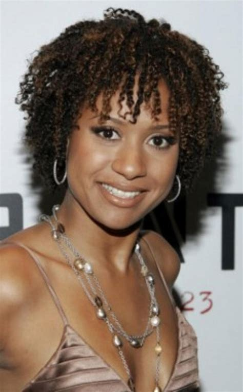 natural hairstyles for black women 2013 behairstyles com