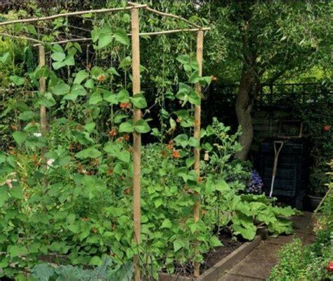 vertical vegetable garden design vegetable garden design vertical herb gardens pinterest