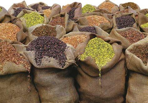 Bulk Organic Refried Black Beans - TASTE ADVENTURE