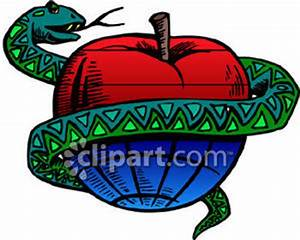 A Snake Around an Apple - Royalty Free Clipart Picture