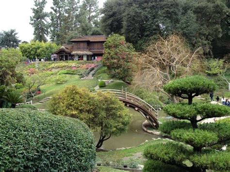 japanese garden picture of the huntington library