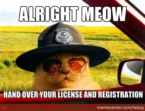 Meow Meme - alright meow by ladyg meme center