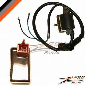New Cdi Box  U0026 Ignition Coil Redcat Giovanni Gokart Atv