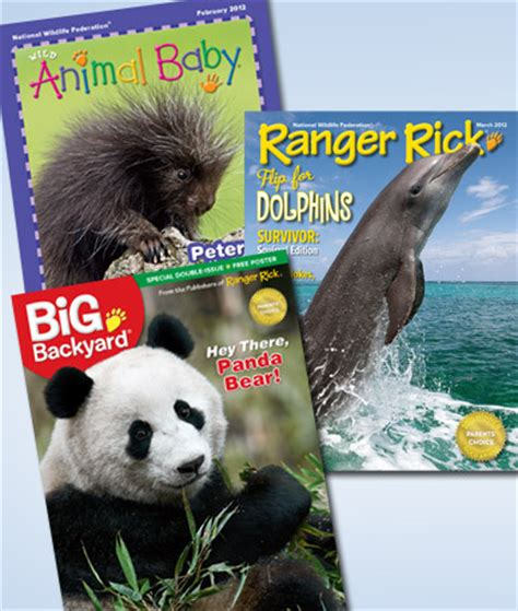my big backyard magazine subscription wild animal baby my big backyard or ranger rick magazines 1 year subscription for 10