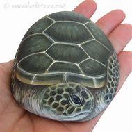 Painted Rock Sea Turtle