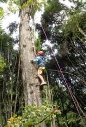 wainui park camp activities ymca