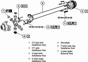 Wiring Diagram  33 Ford Ranger Drive Shaft Diagram