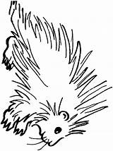 Porcupine Coloring Pages Clipart Animals Sheet Dubois Printable Template Clip Sketch Print Cliparts Animal Town Web Library Open sketch template