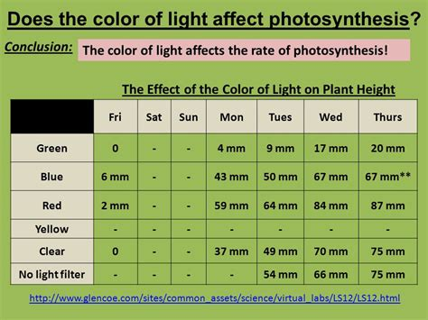 what does the blue light filter do do now 101 plant and animal cells are different which