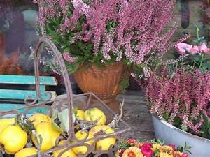 Blumenladen München Schwabing : die blume inh petra schlosser floristik in m nchen schwabing west im das telefonbuch finden ~ Markanthonyermac.com Haus und Dekorationen
