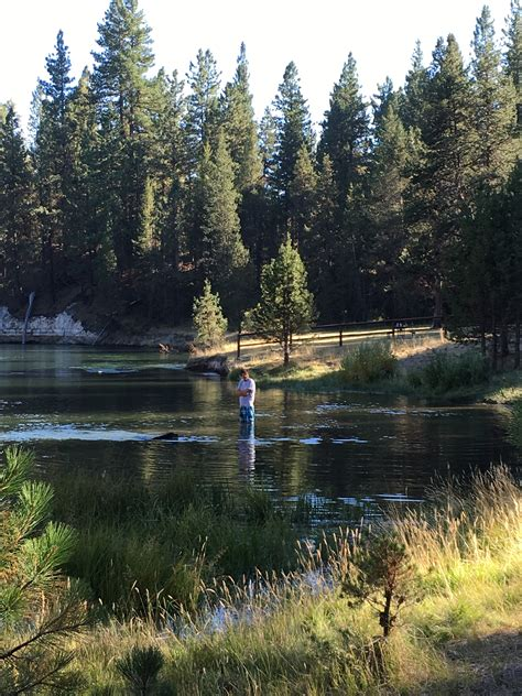 Reservations For Pine Valley State Park In Utah