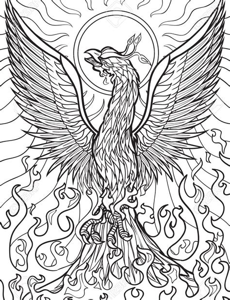 phoenix bird coloring pages  getcoloringscom  printable colorings pages  print  color