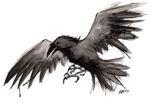 Flying Raven Tattoo Drawings