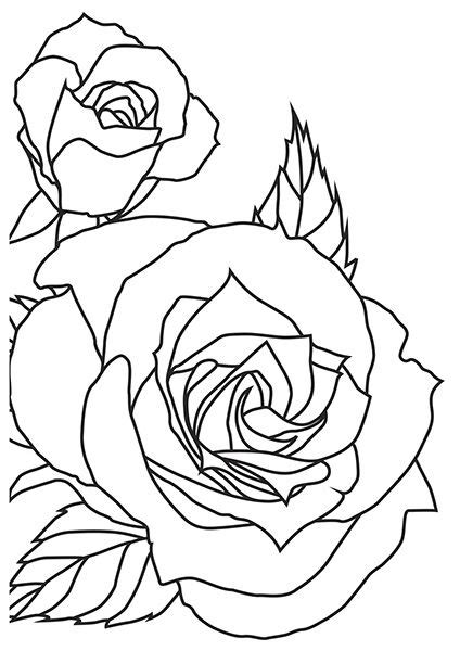 Kaisercraft+-+4+x+6+Embossing+Folder+-+Sketched+Rose+at
