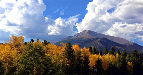 rockies colors rocky mountain bushcraft fall colors in the rockies