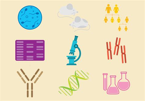 bottle brush molecular biology icon vectors free vector