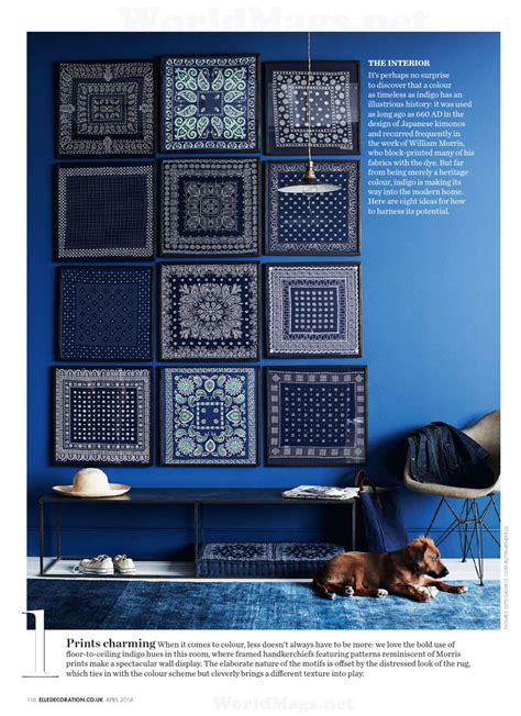 indigo interiors  color