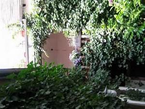 Rhodt Unter Rietburg Ferienwohnung : ferienwohnung im alten kaufhaus rhodt unter rietburg youtube ~ Eleganceandgraceweddings.com Haus und Dekorationen