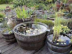 installer un mini bassin With marvelous idees de terrasse exterieur 6 comment amenager une mare naturelle