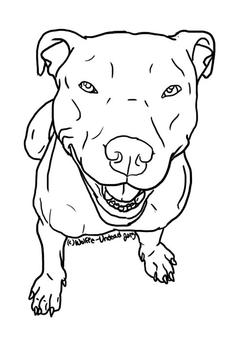 Pitbull clipart line, Pitbull line Transparent FREE for