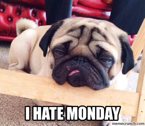hate monday pictures   images  facebook