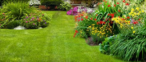 lawn and garden gypsum usa gypsum