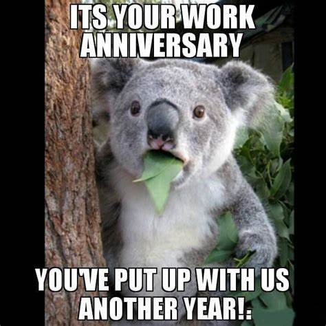Easily add text to images or memes. Pin on work anniversary