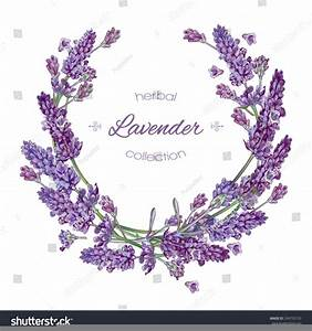 Lavender Border Clipart | Free Images at Clker.com ...