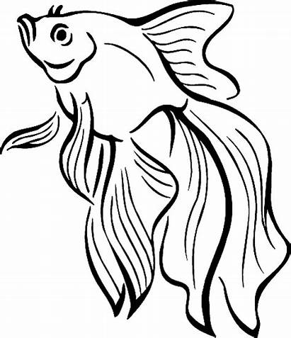 Fish Tropical Coloring Pages Pretty Gold Getcoloringpages