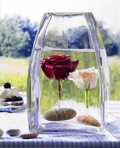 Weihnachtsbaum Wasser Geben : rosen in eine mit wasser gef llten vase geben mit draht und steinen einschweren dekorieren ~ Bigdaddyawards.com Haus und Dekorationen