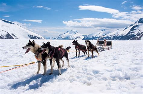 冰雪奇缘 22张美图带你畅游阿拉斯加环球旅行_环球网