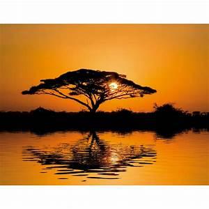 Papier Peint Photo : papier peint photo paysage africain ~ Melissatoandfro.com Idées de Décoration