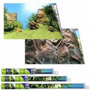 Aquarium Zubehör Günstig : juwel r ckwand poster f r aquarium g nstig kaufen bei zooroyal ~ Frokenaadalensverden.com Haus und Dekorationen