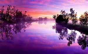 Purple, Nature, Wallpaper, Computer
