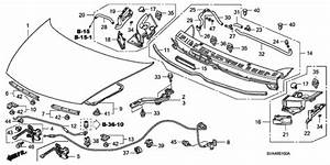 Oem 2007 Honda Civic Coupe Engine Hood Parts