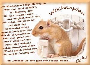 Guten Morgen Winterlich : es wird winterlich seite 477 ~ Buech-reservation.com Haus und Dekorationen