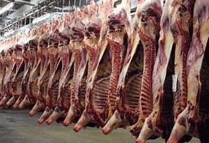 Abattage D Arbres Autorisation : halal une autorisation pr fectorale d courageante ~ Premium-room.com Idées de Décoration