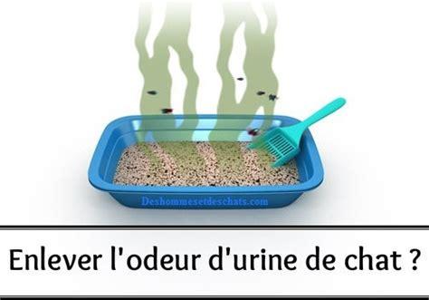 odeur d urine de sur canap comment enlever l 39 odeur de pipi de des hommes et