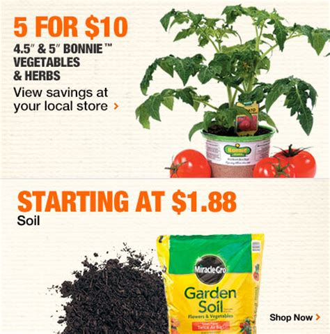 home depot bonnie vegetable herb plants 5 10 soil