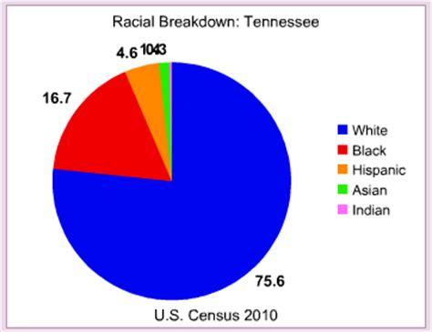 the color of crime tennessee the color of crime occidental dissent