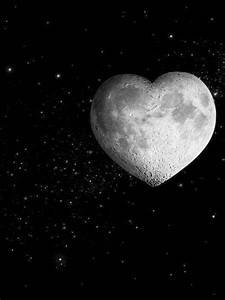 241 best Goodnight Moon & Stars images on Pinterest ...