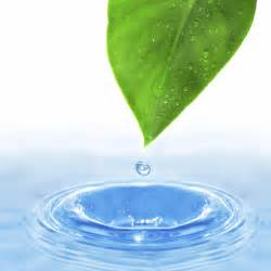 The Best Solution for Your Water Problem - Green Total