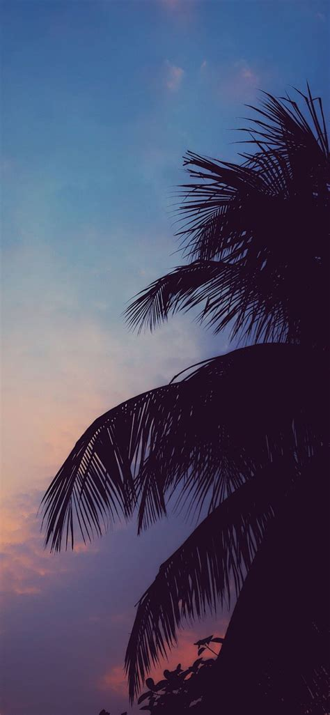 25 chill aesthetic hd wallpapers desktop background