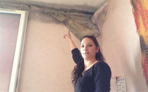 moisissure tapisserie chambre appartement attaqué par l humidité à bel air