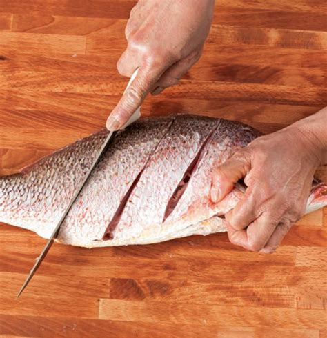 fish oven temp whole fish oven temperature and inside temperature seasoned advice