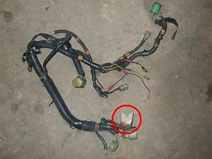 Crx Si Engine Harness  What Is This Plug
