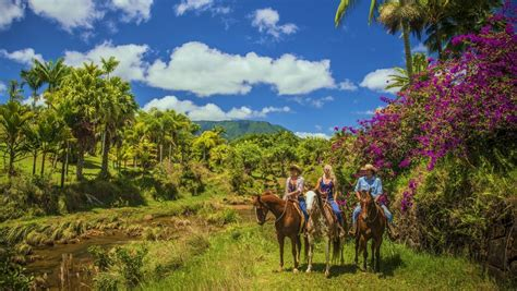 kauai falls silver horseback riding ranch