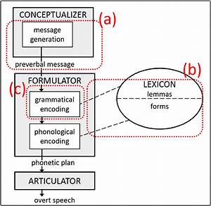 Speech Production Model Adapted From Levelt  9